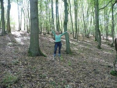 het magische bos